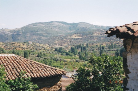 Sirince countryside is abundant with vineyards and fruit orchards.