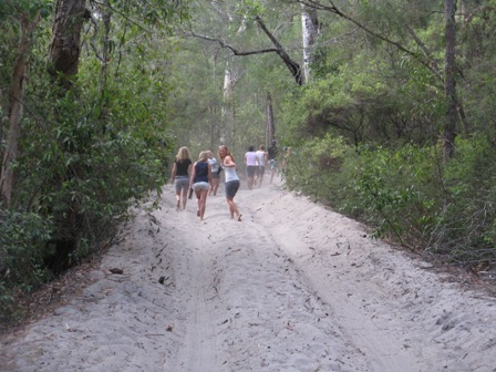Typical Fraser Island track during a very dry season.