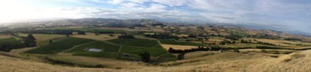 Waipara landscape.