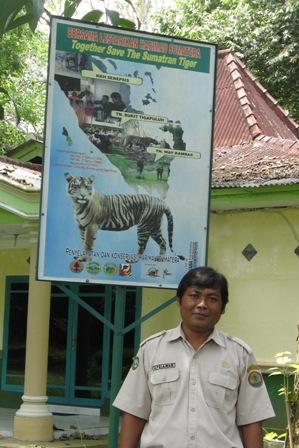Way Kambas park manager in charge of monitoring Sumatran tigers.