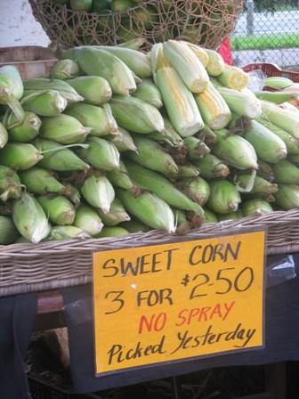 Noosa Farmers Market fresh sweet corn display.