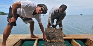 J Hunter Pearl Farm workers.