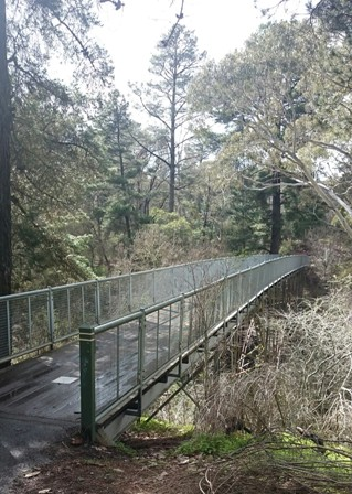 Hepburn Springs footbridge into the bush