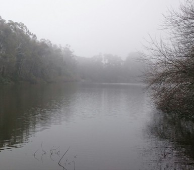 Lake Daylesford in the mist