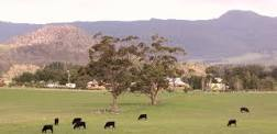 Macedon Ranges scenery