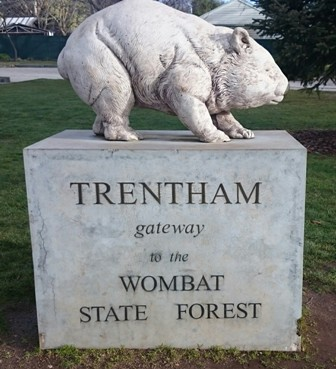 Wombat Hill wombat statue in Trentham
