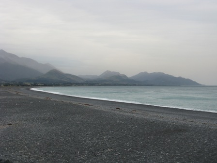 Beach at Kaikoura before whale watching tour