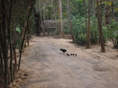 Mon village street scene