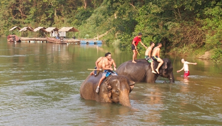 Travellers and elephants bathing at river Kwai elephant camp