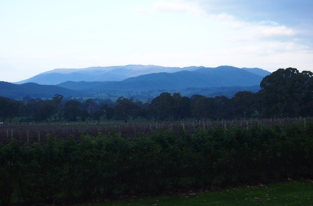 King Valley from Gracebrook Vineyard on a wintry late afternoon