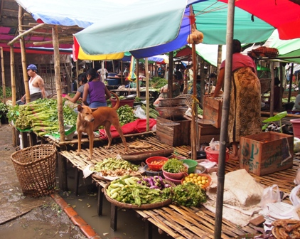 Dalah market scene with wandering dog