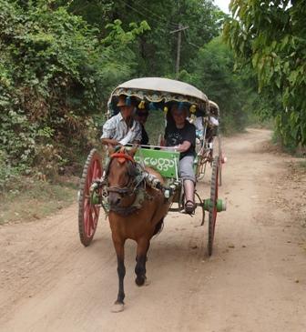 Horse cart at Awa Amarapura