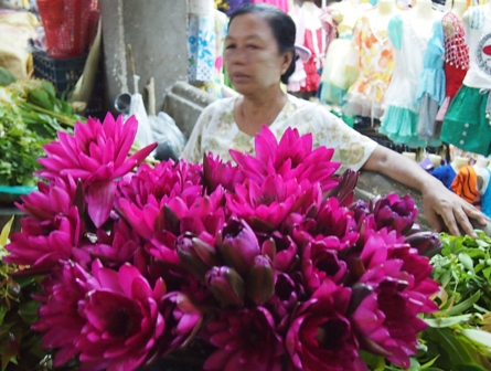 Nan She market flower seller surrounded by lotus blossoms in Mandalay