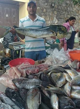 Fishmonger at Ajijic tianguas