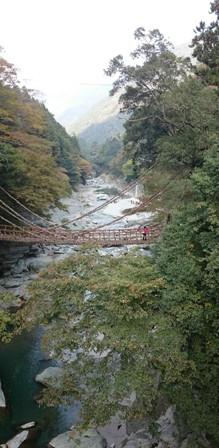 Iya-no-Kazura Bashi bridge