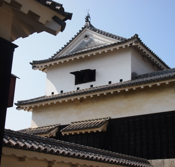 Matsuyama Castle roofs